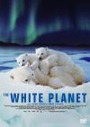 Whiteplant