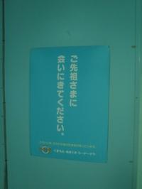 P8253345