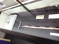 P1154184