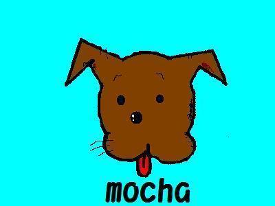 Mocha_1