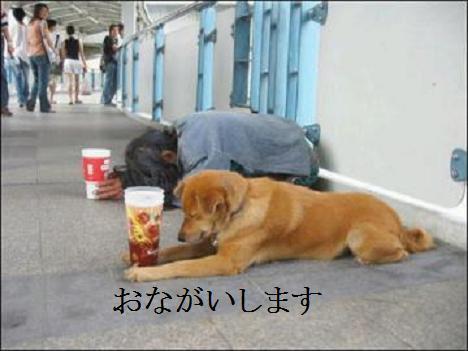 Onegai_1